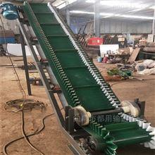 DY500大傾角種子干果分揀輸送機,裙邊式上料機