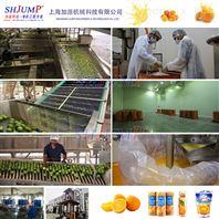 柑橘橙子水果加工生产线 柠檬汁提取设备