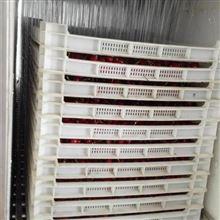 6XY-3大樱桃保鲜分级机 预冷的好处多又多