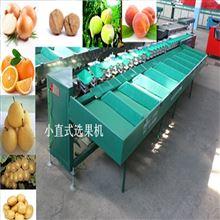 XGJ-Z周至猕猴桃分级机 自动化果蔬分选设备