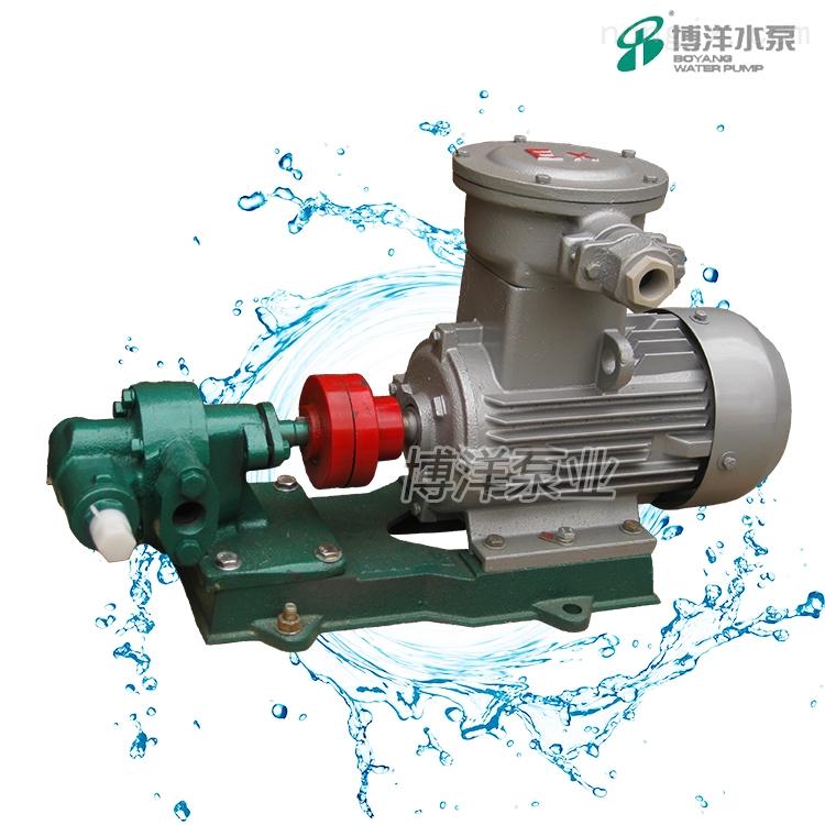 齿轮油泵(防爆型)