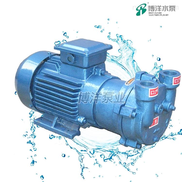SKA(2BV)水环式真空泵