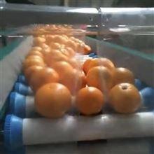 XGJ-SZ柑橘分拣机  象山红美人选果分级设备