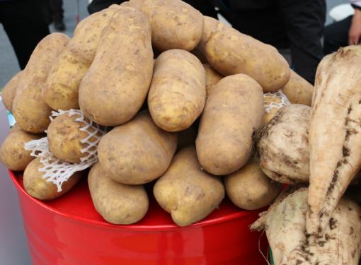 """12月21日:""""农产品批发价格200指数""""比上周五上涨0.74个点"""