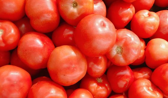 """4月15日:""""农产品批发价格200指数""""比昨天下降0.11个点"""
