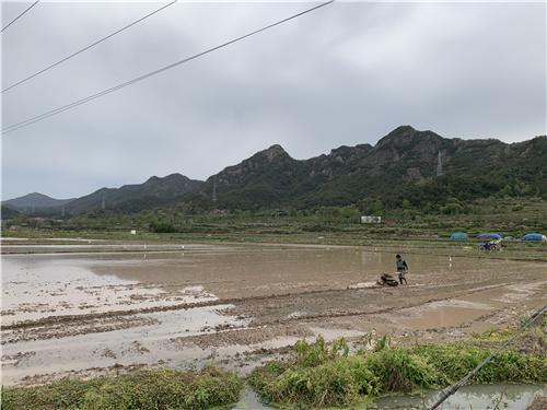 广东河源市组织农机管理与推广人员开展早稻机收作业安全检查