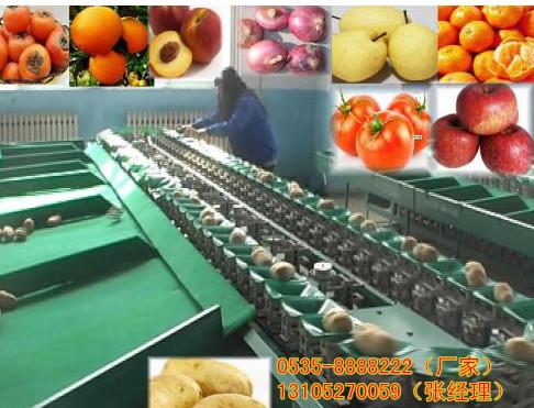 水果分果机