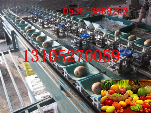 水果选果机
